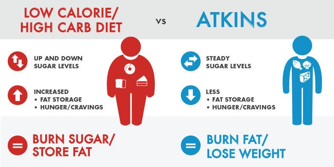 High Carb Atkins Diet